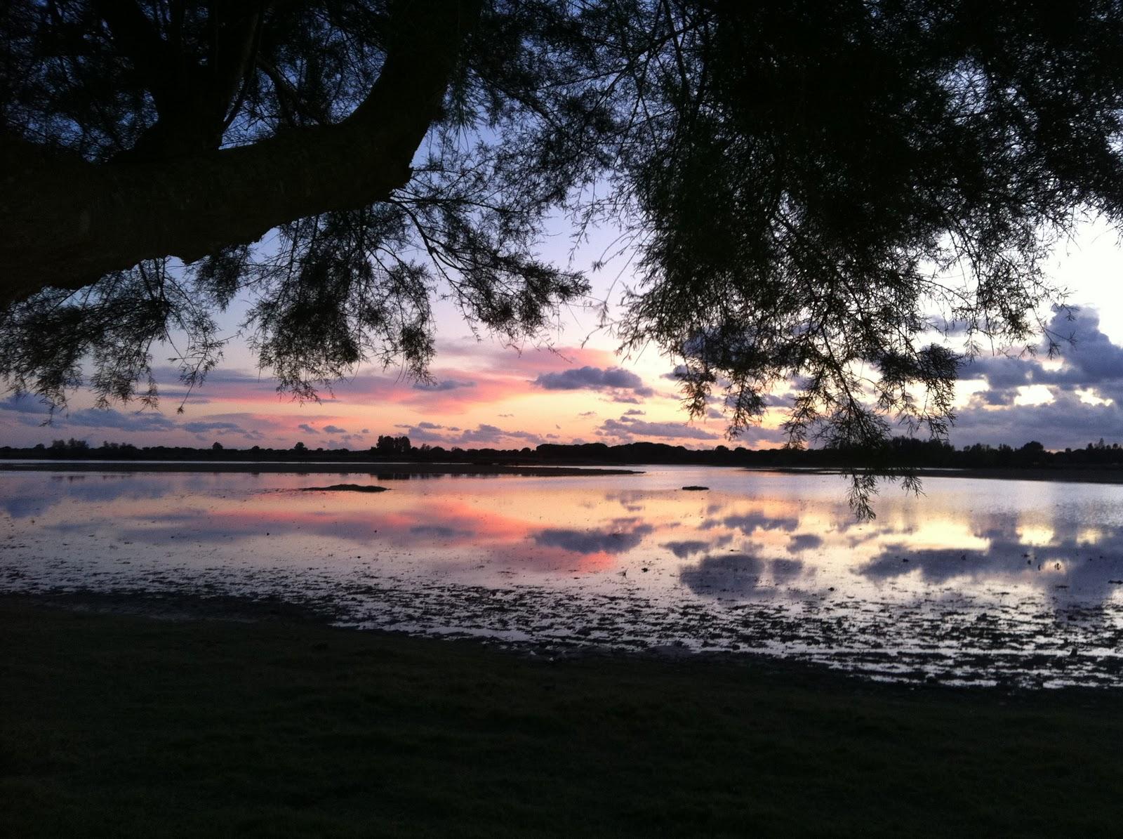 Anochecer en Doñana